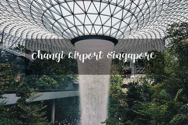 Changi Airport Singapore สิงคโปร์