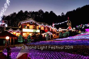 Herb Island Light Festival 2019