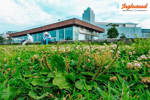 เช็คอิน โยโกฮาม่า เมืองท่าสุดคลาสสิค ที่ไปแล้วจะติดใจ เที่ยวญี่ปุ่น ท่องเที่ยวต่างประเทศ ทริคการเดินทาง เที่ยวโยโกฮาม่า