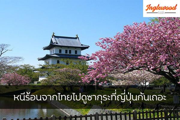 หนีร้อนจากไทยไปดูซากุระที่ญี่ปุ่นกันเถอะ