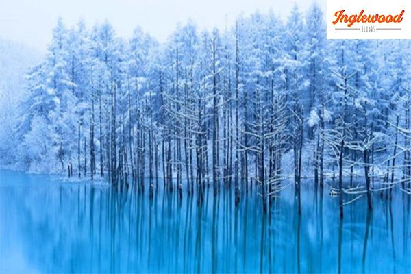 เที่ยวญี่ปุ่น รวม 4 ที่เที่ยวญี่ปุ่นหน้าหนาว เที่ยวญี่ปุ่นเวอร์ชั่นขาวโพลนราวกับเทพนิยาย เที่ยวญี่ปุ่น ท่องเที่ยวต่างประเทศ ทริคการเดินทาง เที่ยวไต้หวัน ที่เที่ยวญี่ปุ่นหน้าหนาว