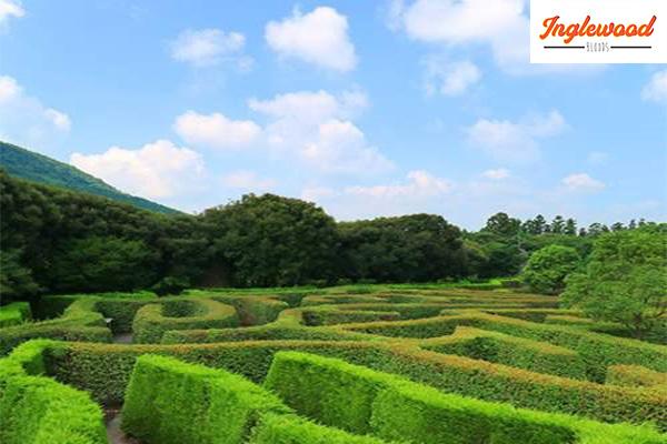 แนะนำสถานที่ท่องเที่ยวประเทศเกาหลีใต้ เที่ยวญี่ปุ่น ท่องเที่ยวต่างประเทศ ทริคการเดินทาง เที่ยวไต้หวัน ที่เที่ยวเกาหลี ที่เที่ยวเกาหลีใต้