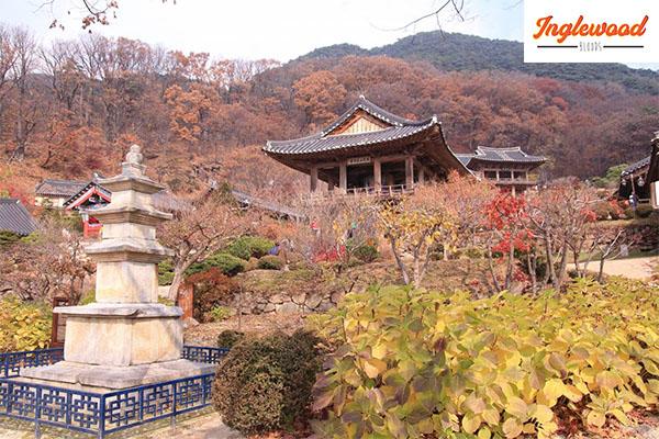 แนะนำสถานที่ท่องเที่ยว เมืองเคียงซานเหนือ ประเทศเกาหลีใต้ #เที่ยวญี่ปุ่น #ท่องเที่ยวต่างประเทศ #ทริคการเดินทาง #เที่ยวไต้หวัน เที่ยวประเทศเกาหลีใต้ เที่ยวเมืองเคียงซานเหนือ
